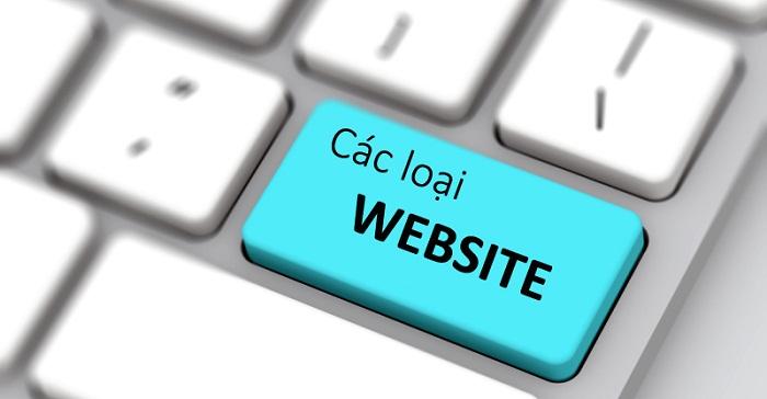 Có bao nhiêu loại website?